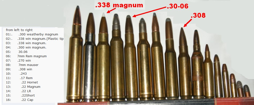 100+ 7mm Weatherby Magnum Ammo Comparison – yasminroohi