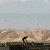 Zionist Seizure of Palestinian Land Increases by 70% in 2013