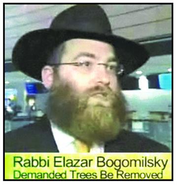 rabbi-bog
