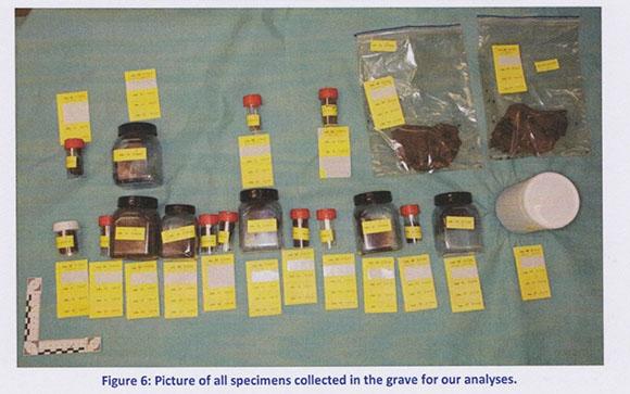 samples1