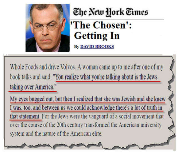 david brooks 3nd NY Times shosen getting in small for internet internet size
