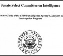 Senate-report