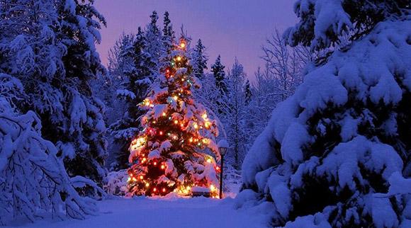 Hear Dr. David Duke on the True Meaning of Christmas – David Duke.com