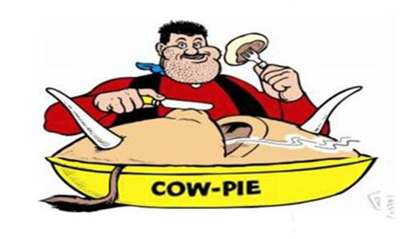 cowpie