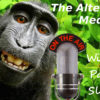 The Alternative Media with guests Andrew Joyce and Don Advo