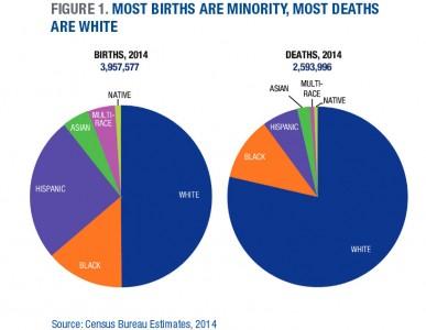 birthdeathpiecharts