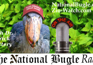 They all have to go back! National Bugle Radio with Patrick Slattery 6.20.18