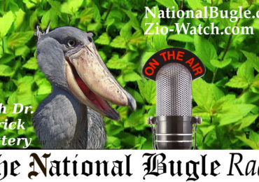 The Putin-Trump Summit and Jewish Power Play — Mark Dankof on National Bugle Radio