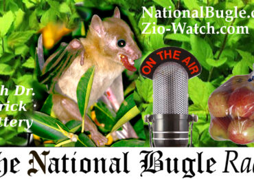National Bugle Radio with Patrick Slattery 7.24.18
