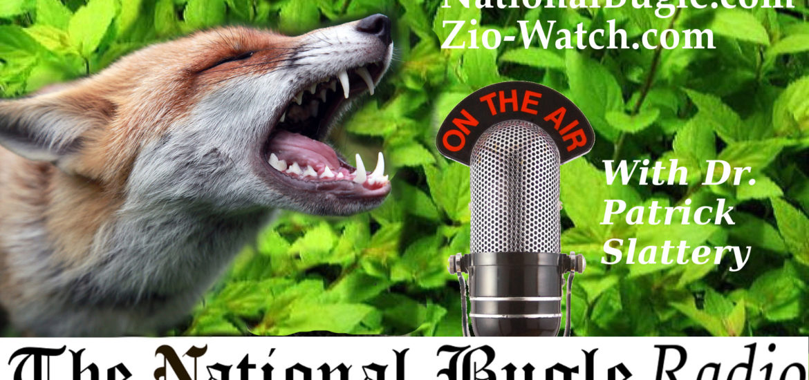 Mark Collett on home schooling and public education: National Bugle Radio