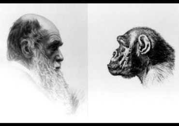 Dr Duke and Mark Collett of UK Discuss the Zio Media Turning of Darwin Upside Down & Why Sleep is the Most Important Component of Mental & Physical Power!